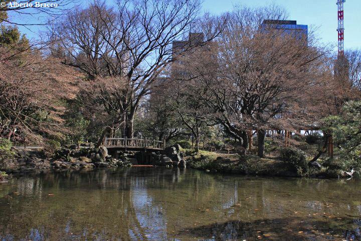 un giardino giapponese